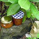 recette Confiture de mirabelles / vanille
