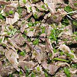 recette Canard en salade
