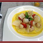 recette Risotto aux St Jacques et sauce Safran