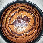 recette Marbré du chef Felder avec la technique du zébra cake