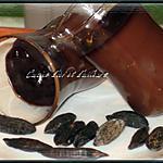 recette Panna cotta au chocolat et feves tonka