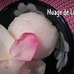 recette SORBET LITCHEES/ROSE