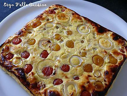 g_teau_plume_tomates_cerise_basilic_oignon1