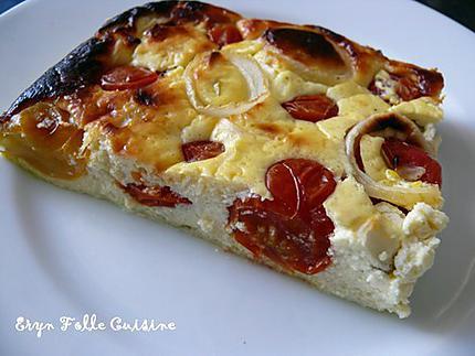 g_teau_plume_tomates_cerise_basilic_oignon3