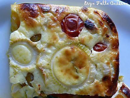g_teau_plume_tomates_cerise_basilic_oignon2