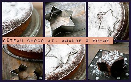 Gâteau moelleux fondant chocolat Amandes & pommes sans beu