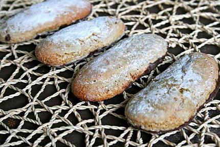 biscuit à la cuillère , farine compléte, sucre-copie-2