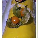 recette Bûche Passion- abricot-Coco