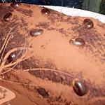recette Bûche chocolat caramel