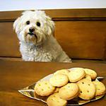 recette Petits biscuits boutons !!