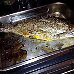recette Truite saumonée farcie à la fondue de poireaux citronée