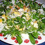 recette Salade d'un soir aux doucettes sauvages