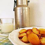 recette Mini madeleines glacées au citron de C. Michalak