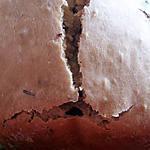 Cake lait de coco au choco à la Map