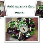 recette Salades mixte trévise aux noix de Pécan.
