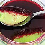 recette Crème pistache/coco et gelée de framboise (compatible dukan)
