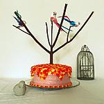 recette Layer cake aux oiseaux fraise citron