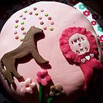 recette Gâteau d'Anniversaire *Théme cheval*
