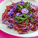 recette Salade de chou rouge, radis noir et carottes