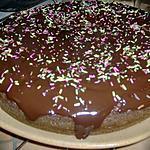 recette gateau a la danette chocolat et ces pépites de noisettes