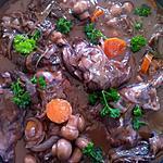 recette CIVET de LAPIN au COOKEO
