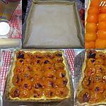 recette Tarte aux abricots frais nature.