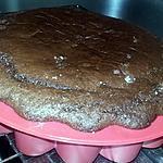 recette Gâteau au cacao et au chocolat sans oeufs