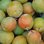 recette Tkemali, sauce aux prunes