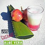 recette Se désaltérer : Jus Detox Aloe Vera Grenade (Thermomix ou pas)