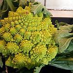 recette Bouquets de chou romanesco et sa sauce