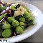 recette Salade de petis pois, féta et oignons rouges