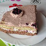 recette Gâteau aux airelles