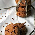 recette Cookies aux graines de sarrasin et pépites de chocolat, Bio, sans gluten sans lait sans oeufs