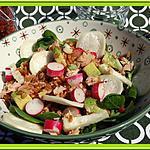 recette Salade de petit épeautre et radis