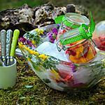 recette Fraîcheur de fruits dans saladier éphémère tout en glace