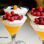 recette Graines de chia parfumées au lait de coco, mangue et framboises