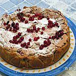 recette gâteau aux groseilles