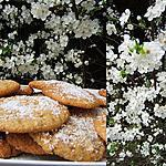 recette Cookies aux pépites de chocolat blanc et de noix de coco