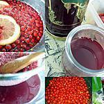 recette Sirop de groseilles rouges