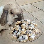 recette Amarretis au chocolat (délicieux)