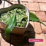 recette Pesto de courgette, persil à l'ail des ours