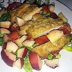 recette Salade aux brugnons et blanc de dinde panée au parmesan