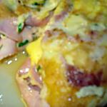 recette Omelette au jambon fromage