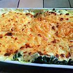 recette Lasagnes ricotta- epinards