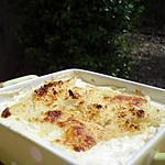 recette Gratin de fenouil à la mozzarella