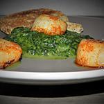 recette Noix de Saint-Jacques sur un lit vert