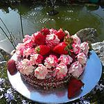 recette Gâteau léger au cacao  ... saveur vanille  .. à la salade de fruits au sirop  garnie de fraises