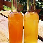 recette Thé kombusha ( l'élixir aux mille vertus )