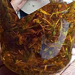 recette Macérat de millepertuis ( acné, eczéma,brûlures, piqûres d'insectes, sécheresse intime etc.. )