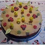 recette Gâteau mes amis aux pays fleuris.